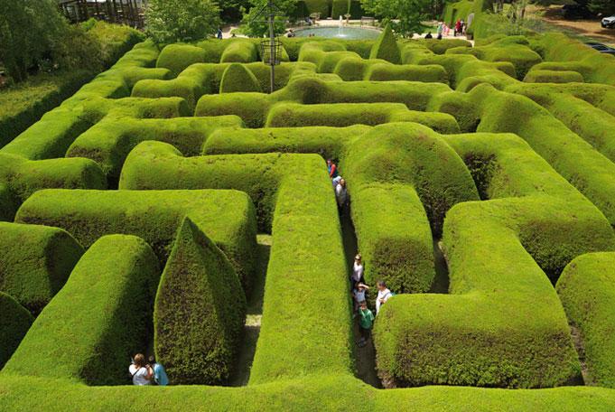 Liebevoller Garten Ashcombe