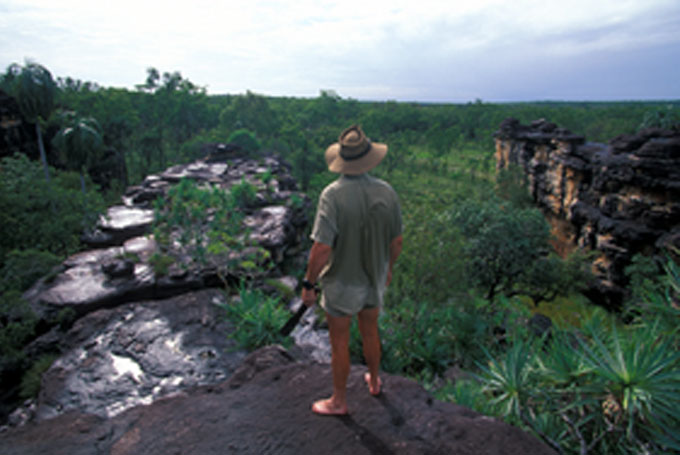 Max' Davidsons Arnhemland in Mt Borradaile