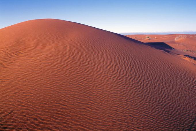 Duene im Outback