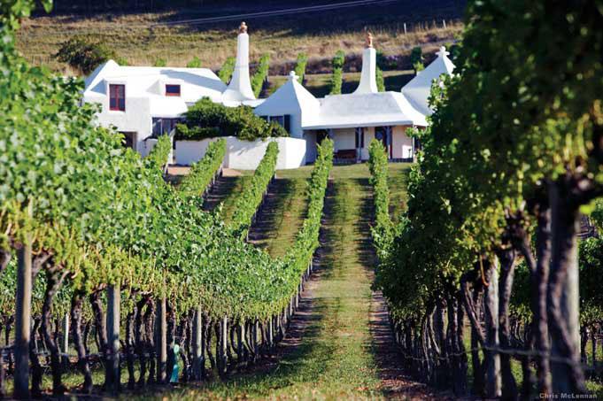Viele Weingüter bieten Proben an